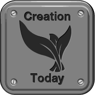 Creation Today